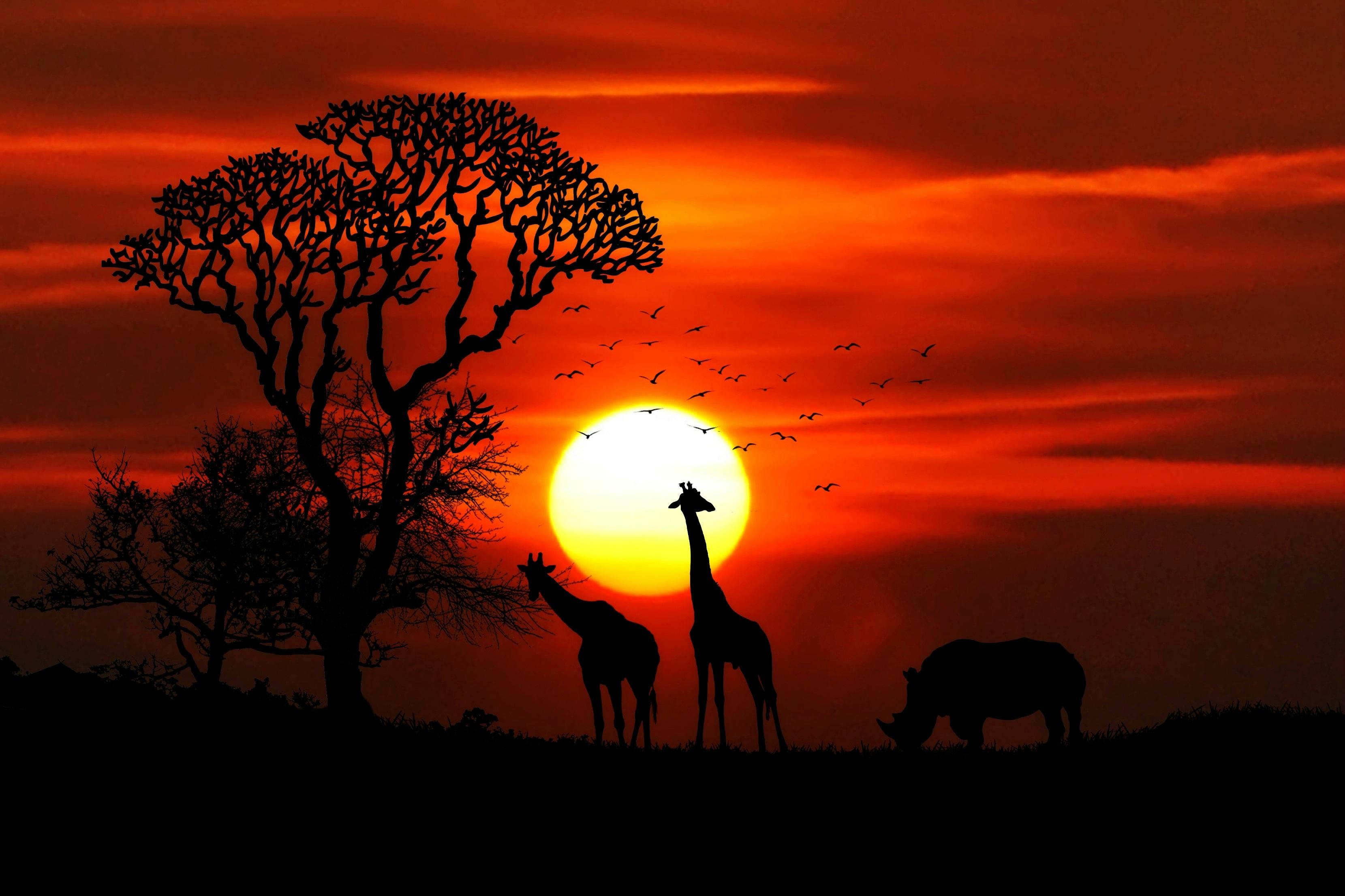photo-afrique-coucher-de-soleil